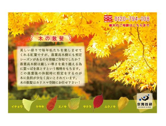 20141023 樹木DM11月分web