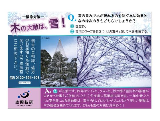 樹木DM12月分web