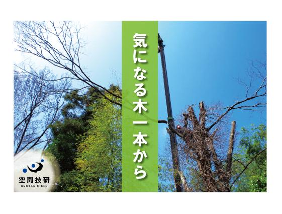 樹木DM4月分web