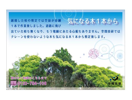 樹木DM6月web