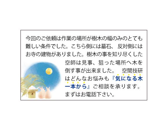 樹木お葉書宛名面9月