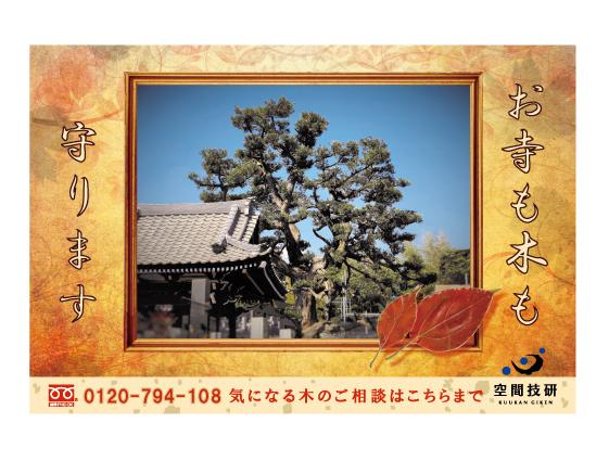 樹木お葉書10月web