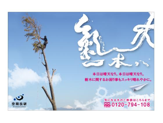 樹木お葉書1-2月web